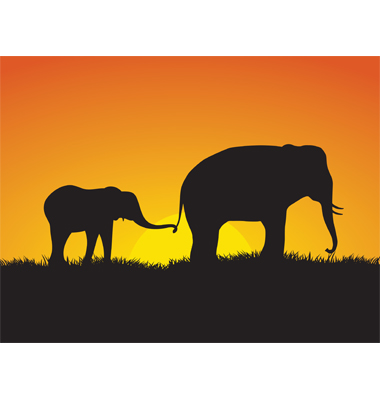 Elephants At Sunset Vector. Artist: befehr; File type: Vector EPS