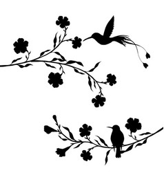 Hummingbirds and flowers silhouettes vector