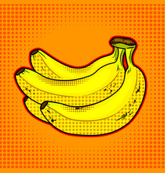 Bananas fruit vector