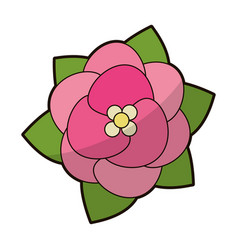 Pink flower floral decoration vector