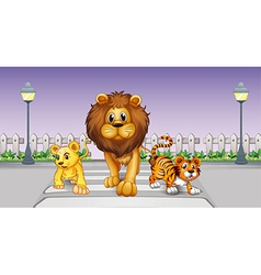 Wild animals in the street vector image