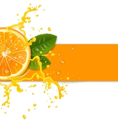 Fresh orange background vector