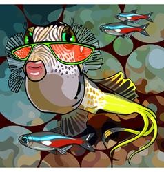 cartoon fish glamor glasses vector image vector image