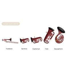 Five musical brass instrument vector