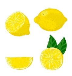 Lemon fruits vector