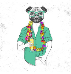 Retro hipster animal pug-dog with tropic cocktail vector
