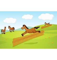 The four horses vector