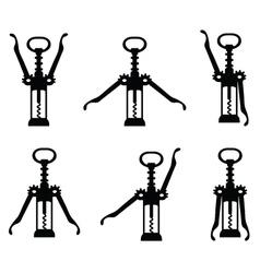 corkscrew 5 vector image