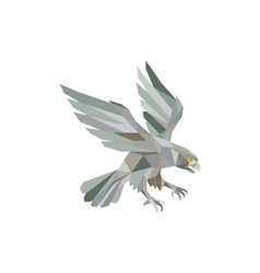 Peregrine Falcon Swooping Grey Low Polygon vector image