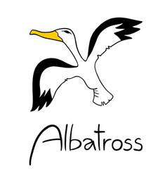 Albatross vector