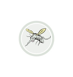 Mosquito flying front view cartoon vector