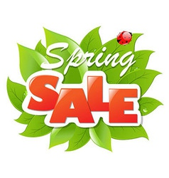 Spring sale poster with leaf vector