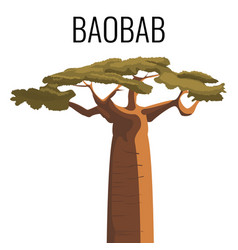 african baobab tree icon emblem with text isolated vector image
