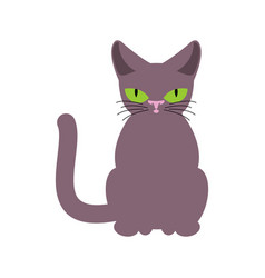Cat smoky isolated pet on white background vector