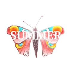 Red colorful butterfly with summer sign vector