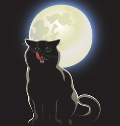 Nocturnal black cat vector