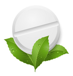 Tablet and leaves on white background vector