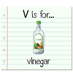 Flashcard letter v is for vinegar vector