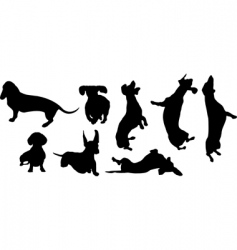 dogs a set vector image vector image