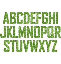 Green alphabet made from leaves vector image vector image