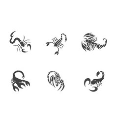 Scorpion logo template vector