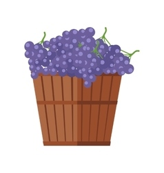 Wooden Barrel with Bunches of Red Wine Grape vector image vector image