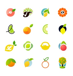 Citrus family - logo templates set vector