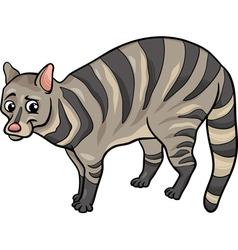 civet animal cartoon vector image vector image