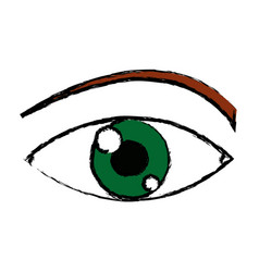 Eye look optical vision eyebrow symbol vector