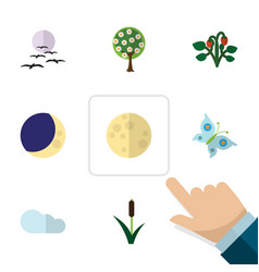 Flat icon ecology set of cattail lunar half moon vector