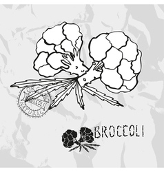 Hand drawn broccoli vector