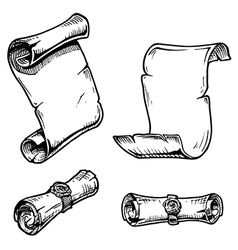 Old scroll vector