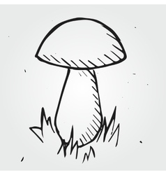 mushroom isolated hand drawn vector image