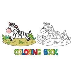 Coloring book of little zebra vector image