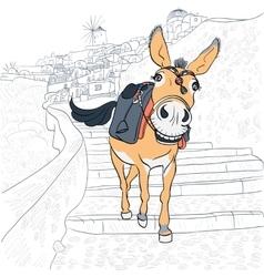 Donkey in oia santorini vector