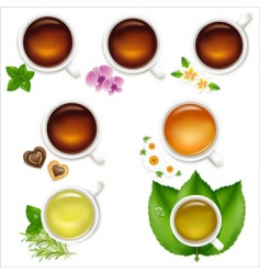 set tea vector image