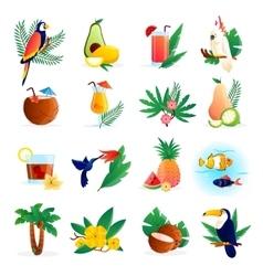 Tropical Icon Set vector image vector image