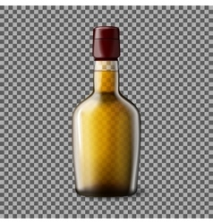 Transparent realistic bottle with smokey vector