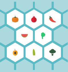 Flat icons melon slice cabbage lettuce and other vector