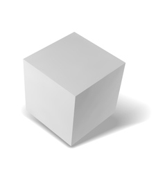 Realistic box on white background with shadow vector image