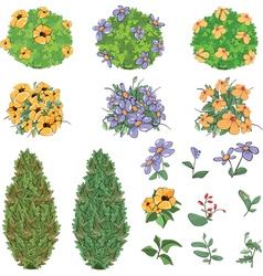Set of garden plants with flowers vector image