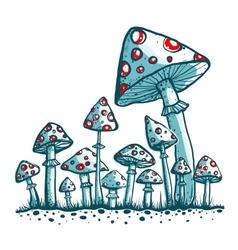 Spotted toadstool mushrooms vector