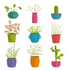 Set of green indoor plants in pots vector
