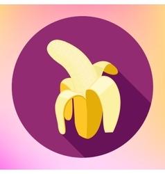 banana flat long shadow icon vector image