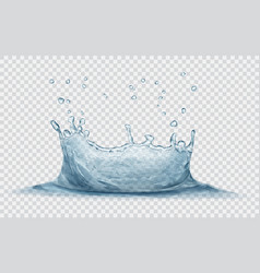 water crown with drops splash of water vector image vector image