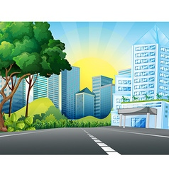 City scene with tall buildings vector image