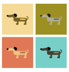 Assembly flat icons pet dog dachshund vector