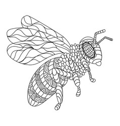 Bee coloring book vector