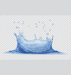 water crown with drops splash of water vector image