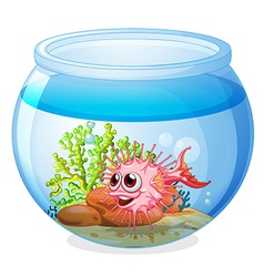 A fish inside the transparent aquarium vector image vector image
